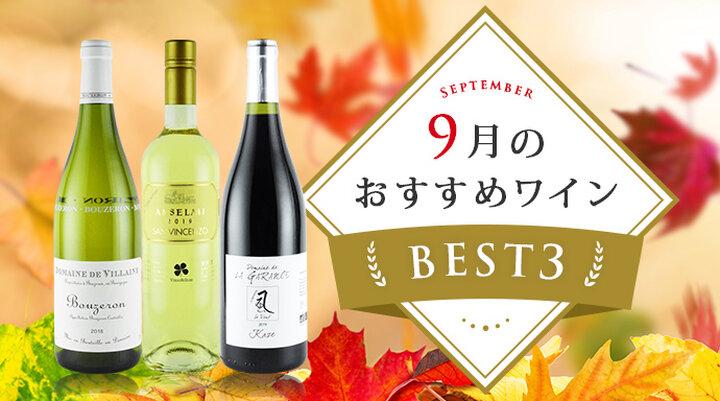 9月のおすすめワインBEST3